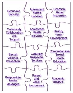 Teenwise Minnesota Teen Pregnancy Puzzle
