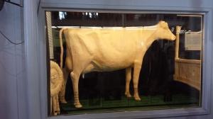 The 2013 Iowa State Fair Butter Cow